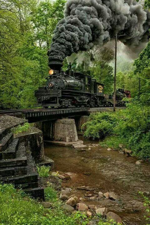 Train                                                       …