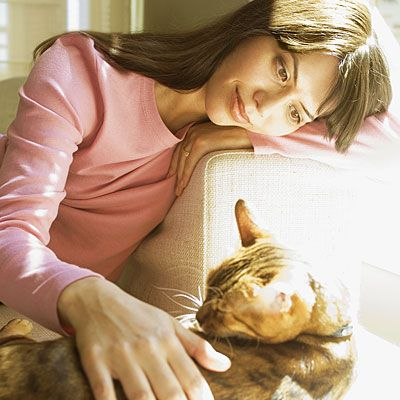 Coping with cats - With a little preparation, you should be able to go anywhere without ending up with itchy, red eyes, a tickly throat, or sneezing.