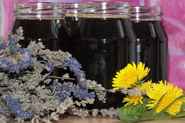 Всем известно растение с названием «одуванчик», которое считается сорняком, но обладает полезными и лекарственными свойствами. Весной и летом цветущий одуванчик трудно не заметить на газонах, в саду, парке, на луку и пустырях. Не поленитесь собрать цветки одуванчика, чтобы заготовить на зиму мед. Предлагаем воспользоваться оригинальным рецептом меда из одуванчиков и лаванды, чтобы иметь вкусные, полезные