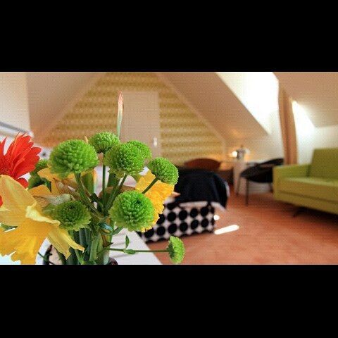 #goodmorning #sun #bright #flowers #attic #superior #deluxe #room #hotel #hotelsax #vintage #design #Prague #summerinprague #czechrepublic #praguehotels