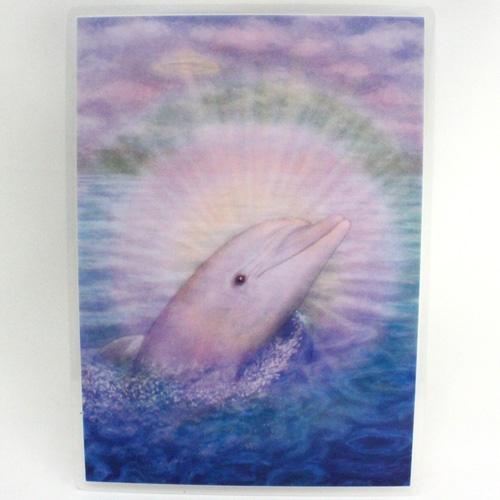 ドルフィンはクジラとともに、地球と人類が最初に具現化した時の高い周波数を保持しています。