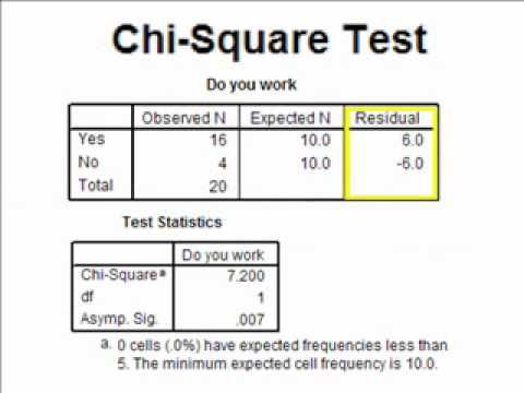 Interpreting the SPSS Output for a Chi Square Analysis