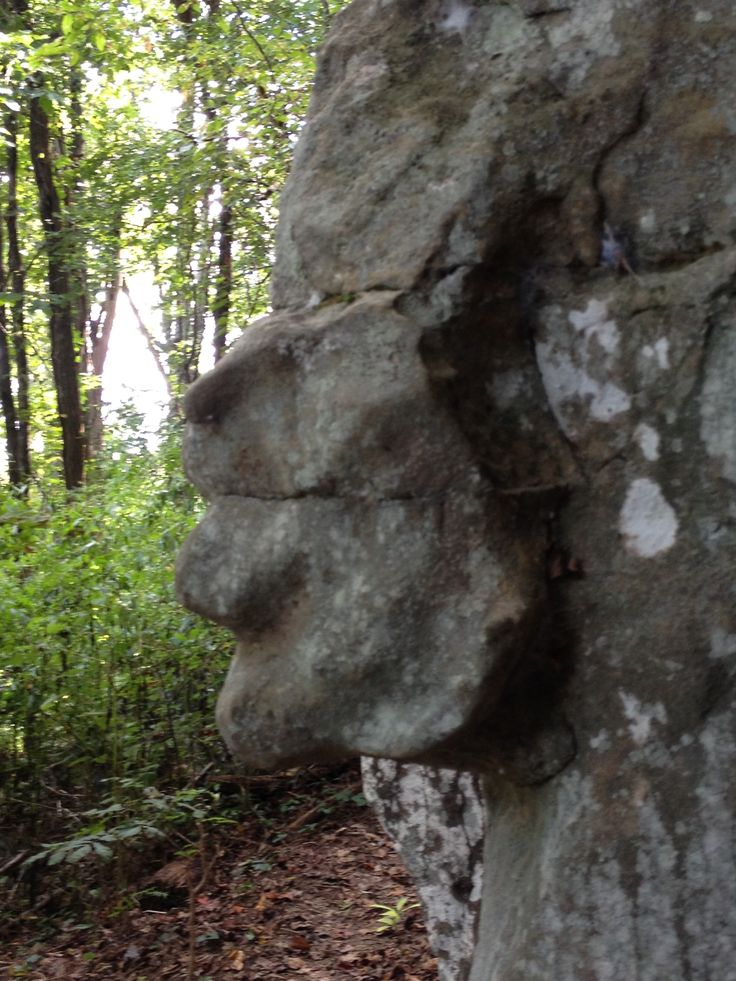 Natural Rock Faces : Best pareidolia images on pinterest funny