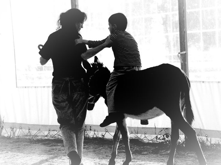"""""""I FEEL YOU"""", Giulia Bergonzoni #photography #children #hippotherapy #horse #donkey #riding #autism #autistic #feel #touch #hands #hope #happiness"""