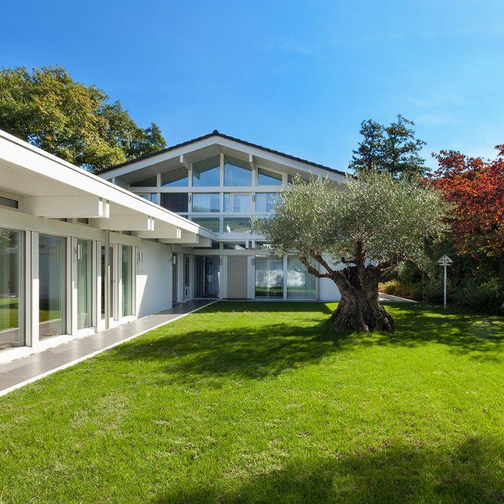 El diseño de exteriores es una parte de la arquitectura paisajista que están dotando de grandes beneficios a la naturaleza al establecer plantas en cualquier espacio disponible con la finalidad de embellecerlo.