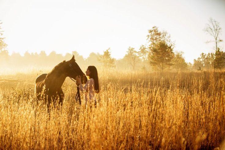 Equestrian Photographer Saratoga NY - Maggie & Hamilton, Pele the Dog Too…