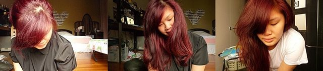 Great article on how to use those professional hair dye ingredients from Sally's at home! I'm starting to loathe box colors and am going to give it a go! From Picklejuicee