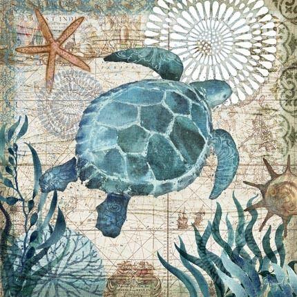 Monterey Bay Turtle by Geoff Allen | Ruth Levison Design