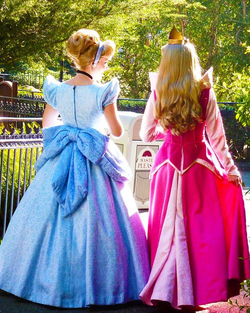 Image result for disney world princesses disneyworldgo