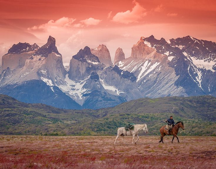 Torres del Paine national Park by Francisco Negroni #patagonia #trekking #chile