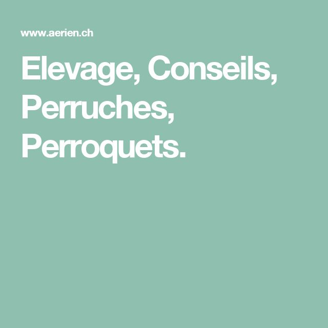 Elevage, Conseils, Perruches, Perroquets.