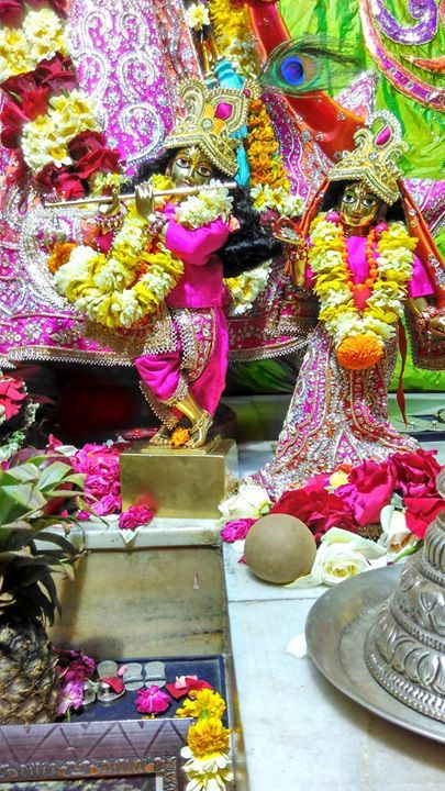 2 Apr 2017 मगल आरत दरशन #SUNDAY FESTIVAL FROM 7-9 PM (shifted to evening). आरत करतन परवचन तथ परसद सभ आमतरत ह #radha #krishna #Prabhupada #devotion #harekrishna #ISKCON #Chandigarh #love