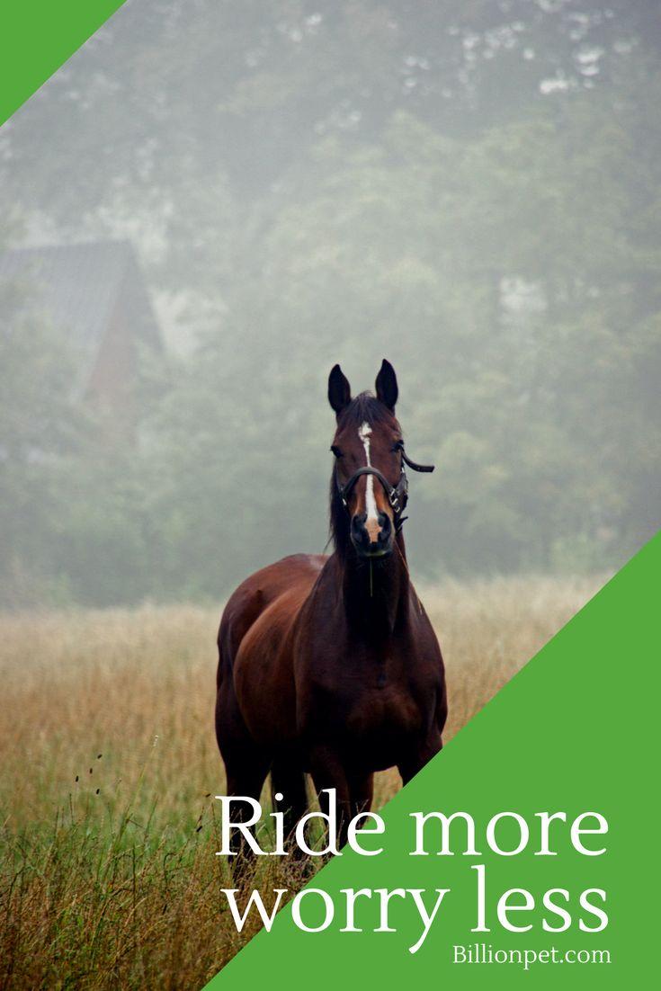 horse boots #horses