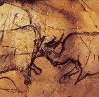 Rhino Cave Art :The Cave of Forgotten Dreams, Werner Herzog