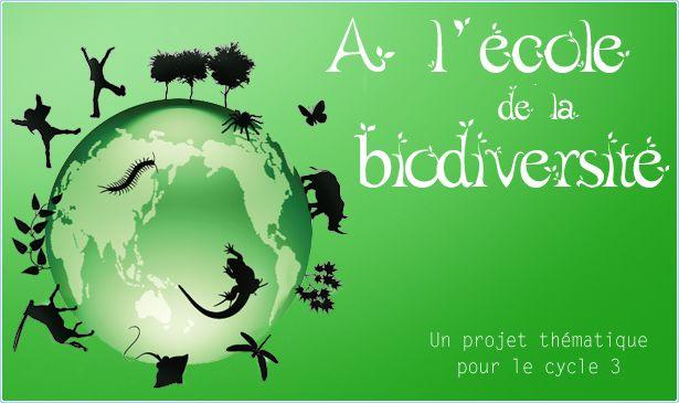 A l'école de la biodiversité est un projet thématique pour le cycle 3 destiné à sensibiliser les enseignants, enfants et parents aux enjeux ...
