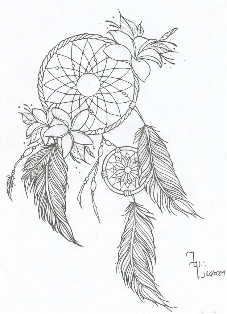 Dream Catcher Outline 29 Best Dream Catcher Images On Pinterest  Dream Catcher Catcher