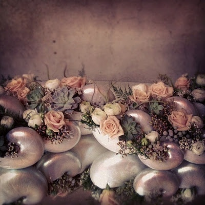 nautilus shell centerpiece - soft romantic pinks and grays