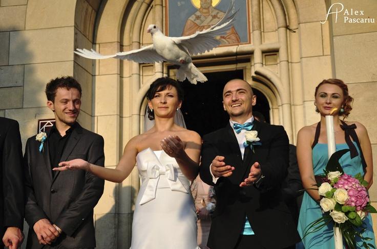 wedding pigeon http://alexpascariu.blogspot.ro/