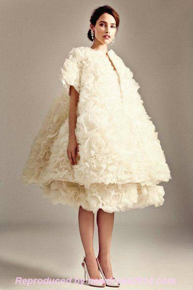 Ugly Wedding Dress Of The Year Award
