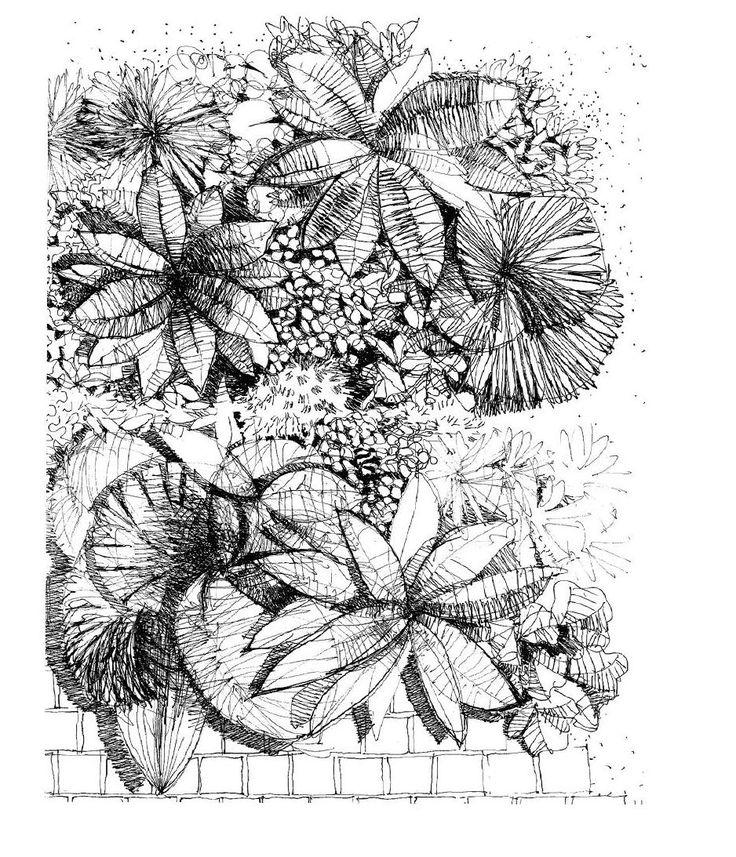 Best 25 landscape drawings ideas on pinterest landscape for Landscape design sketches