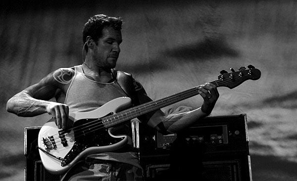 Tim Commerford! Audioslave Bass