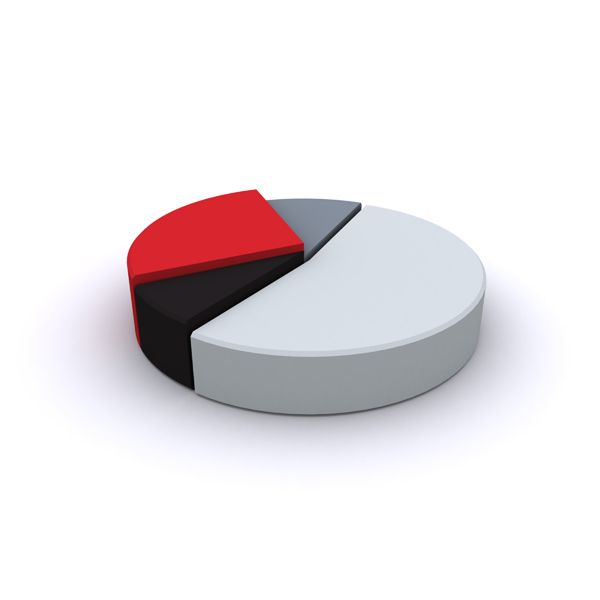 Free Online Pie Chart Maker - Bing Images