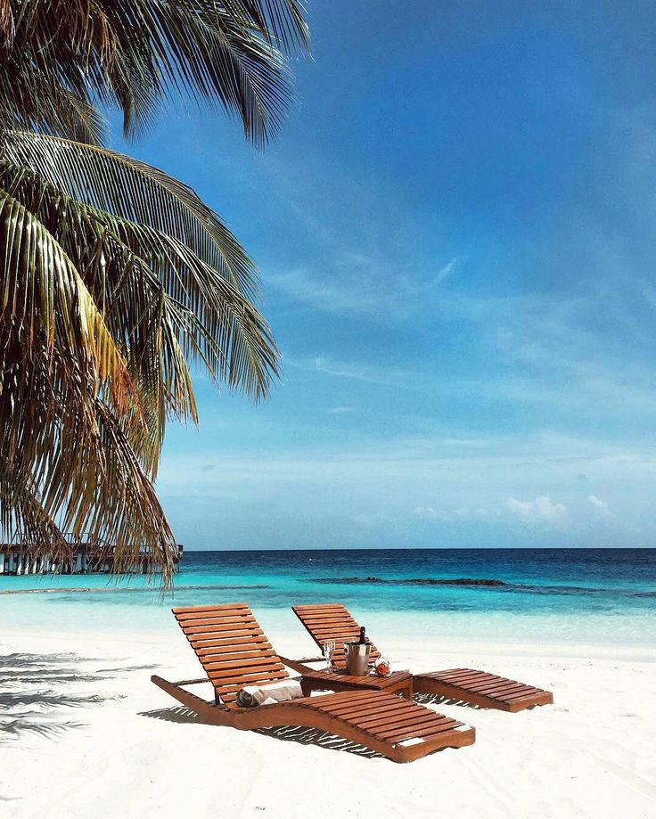 The Maldives Islands - Coco Palm Bodu Hithi