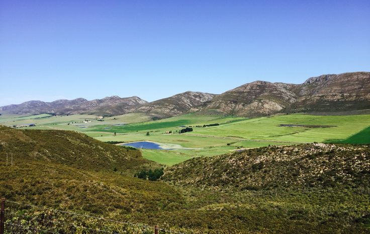 Die Langkloof. Beautiful after the rains.