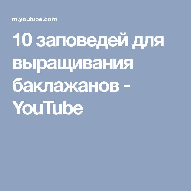 10 заповедей для выращивания баклажанов - YouTube