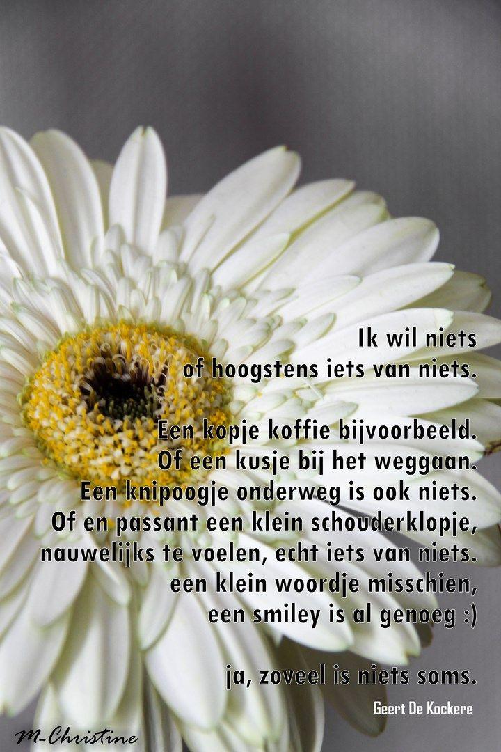 ik wil niets > Geert De Kockere