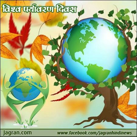 5th june 2013 world environment day