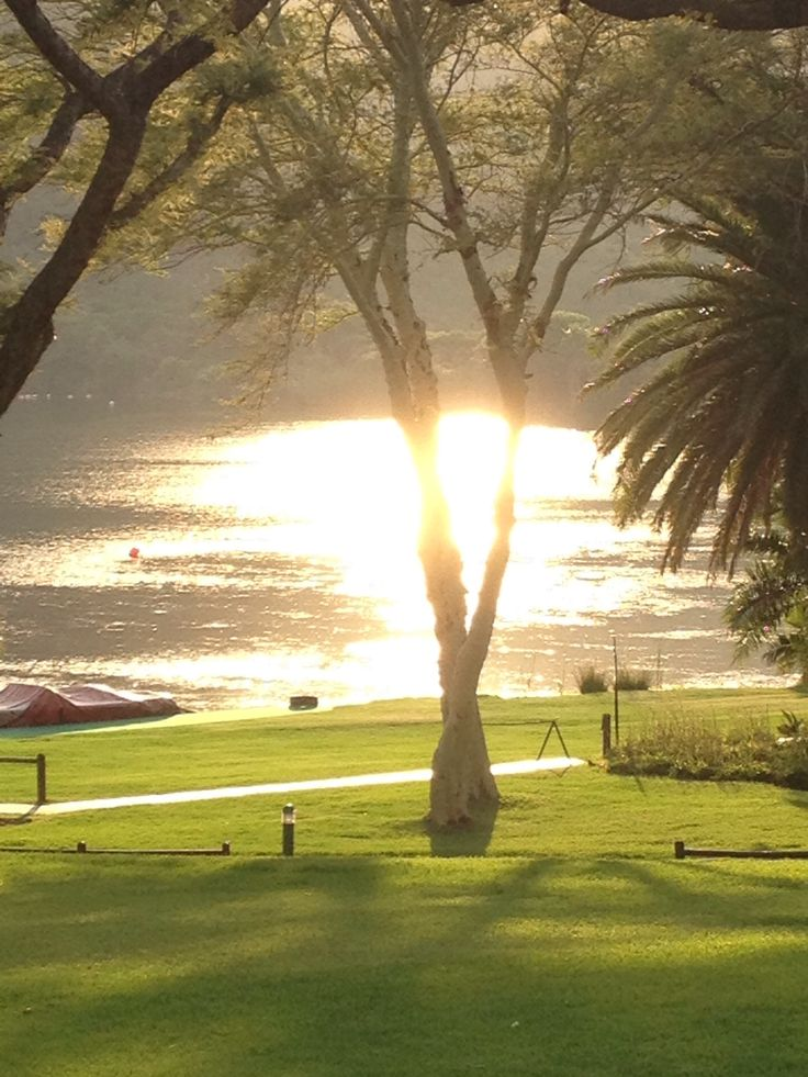 Sunny Sun City South Africa