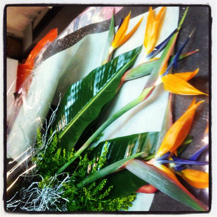 Sterlitzie orange flower composition