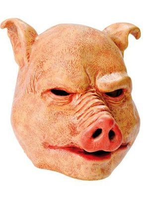 1000 Ideas About Pig Costumes On Pinterest Costumes