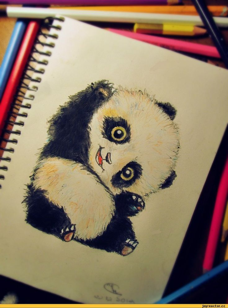 It's just a cute Panda on the picture, don't pay attention ^^