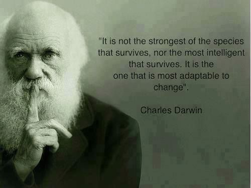 rite.io telling better stories  We Are Humanity | via Facebook quotes -  black and white  charles darwin