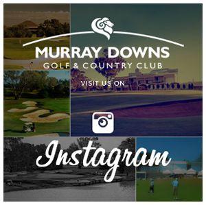Follow Murray Downs on instagram!