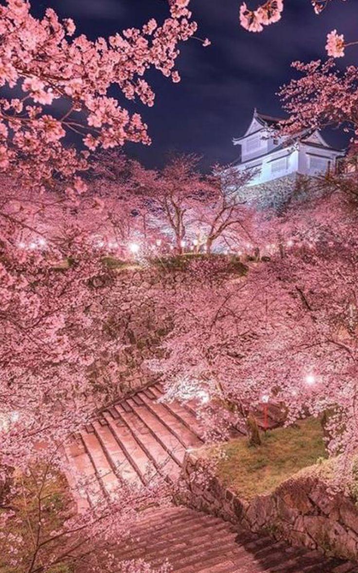 Romantic Wallpaper Hd 1080p Free Japanese Landscape Beautiful Nature Cherry Blossom Wallpaper