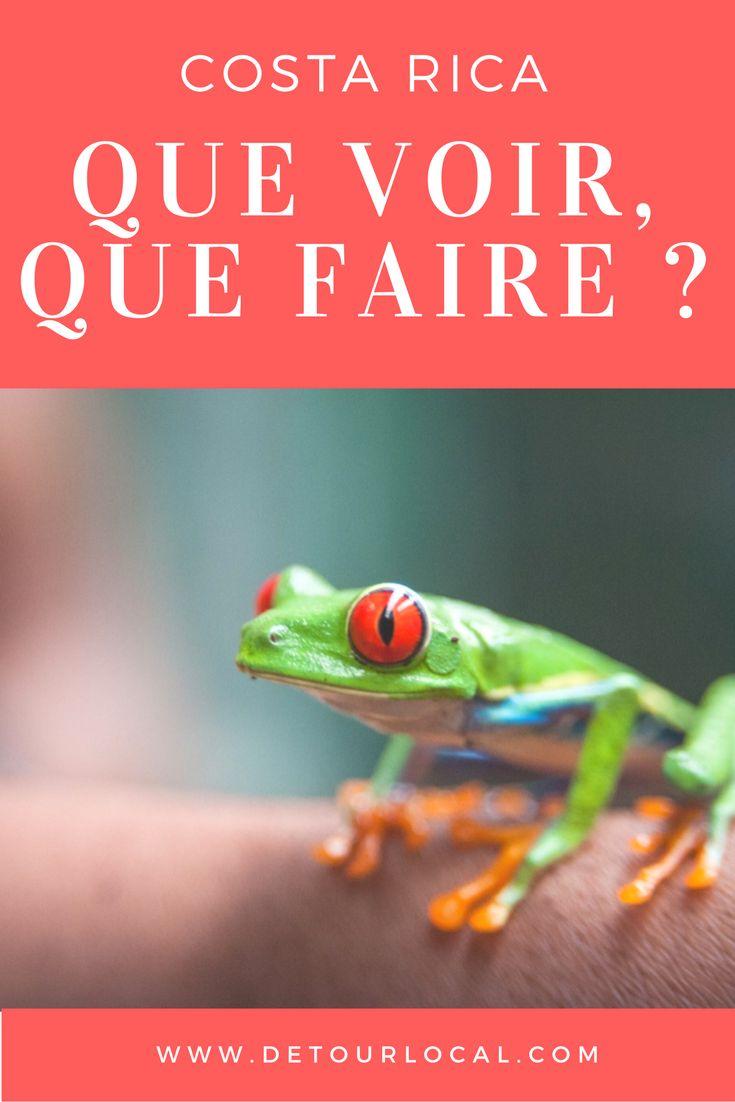 Pour les amoureux de la nature et des animaux, le Costa Rica est le pays à ne pas manquer. Voici tous nos bons plans. -- www.detourlocal.com