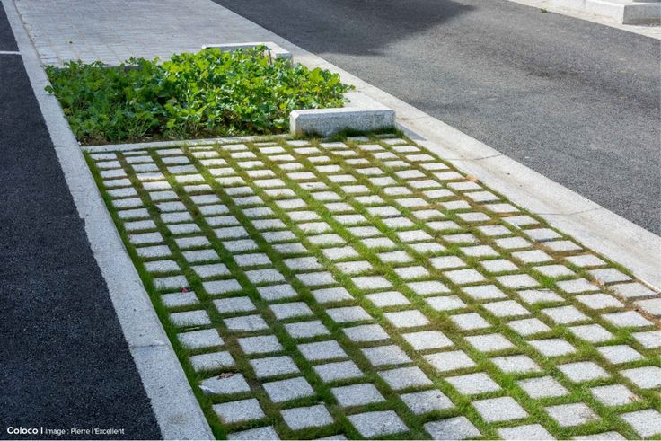 Coloco | Paysagistes / Urbanistes / Jardiniers | Parvis & rue des jardins Dufour