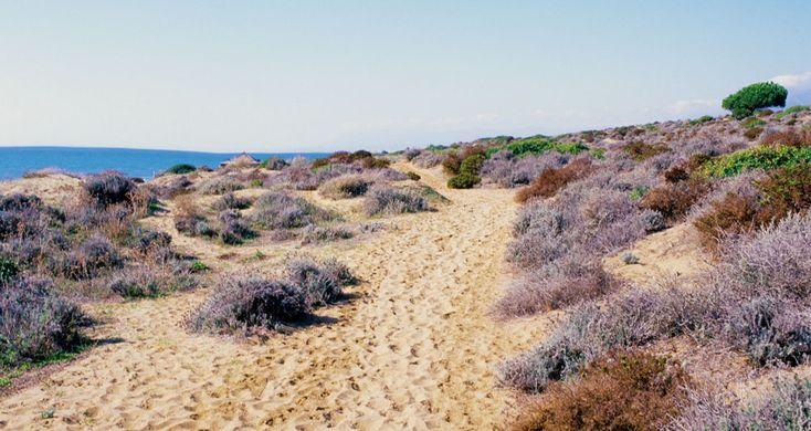Naturismo en Costa del Sol - playas nudistas
