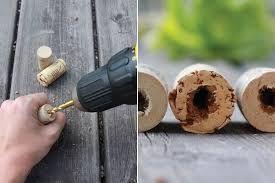Resultado de imagen para diy wine cork succulents