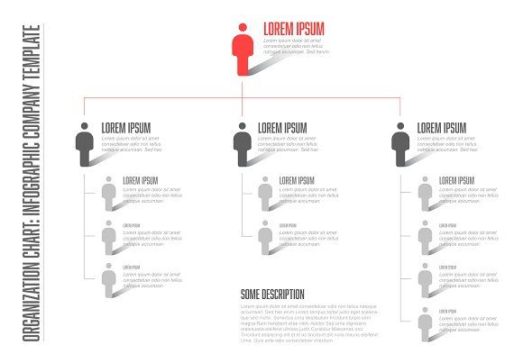 Company hierarchy template by Orson on @creativemarket