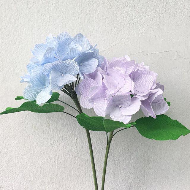 i planted two hydrangeas : ) • • • #crepepaper #crepepaperflowers #paperflowers #papercraft #bluehydrangea #hydrangea #hydrangeas #purplehydrangea #bkkcraft #weddingthailand #weddingbkk