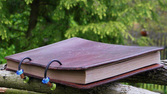 Kniha, nabízející netradiční, ale přesto v praxi ověřené informace o podstatě psychického napětí u dětí i dospělých. Kniha, která léčí. Kniha v kůži.