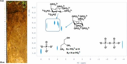 Diffusion-Ordered Nuclear Magnetic Resonance Spectroscopy (DOSY-NMR): A Novel Tool for Identification of Phosphorus Compounds in Soil…