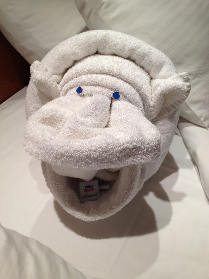 Towel Animal - Hippo Carnival Cruise Line