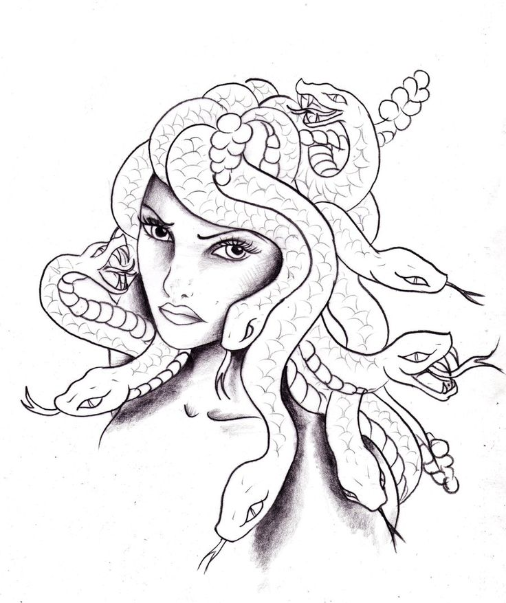 medusa coloring pages 43 best images about medusa on pinterest snakes