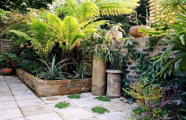 Dicksonia antarctica, astelia chathamica, chimney pots in jungle garden
