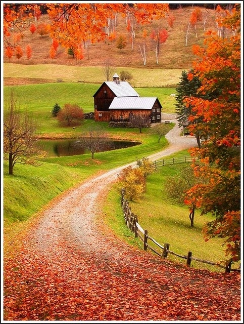 Perfect: land, pond, long driveway!!!Country Roads, Fall Colors, New England, Autumn, Farms, I Love Fall, Country Home, Sleepy Hollow, Woodstock Vermont